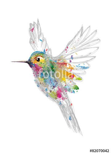 """Pobierz zdjęcie royalty free  """"Kolibri"""" autorstwa namosh w najniższej cenie na Fotolia.com. Przeglądaj naszą bazę tanich obrazów online i odnajdź doskonałe zdjęcie stockowe do Twoich projektów reklamowych!"""