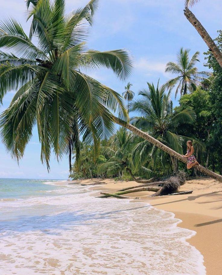 This is bliss.  Finding that Pura Vida underneath the #Cahuita coconut trees via @elvira.gar! #CostaRicaExperts #CostaRica