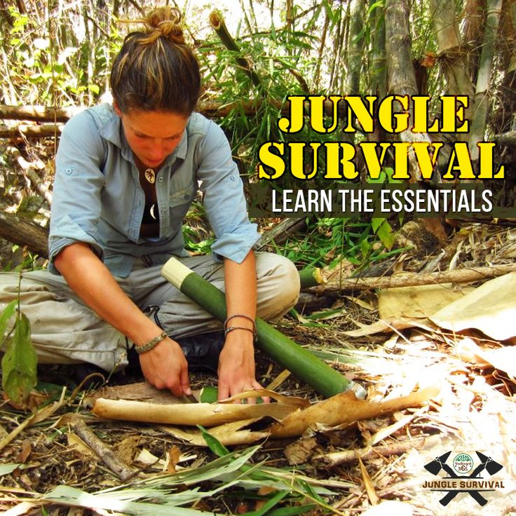 Learn basic and simple #junglesurvival hacks with an amazing training programme in Bandhavgarh. Book Here: http://www.bandhavgarh365.com/jungle-survival-activity/ #junglesurvival #wildernesssurvival