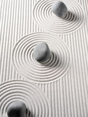 Google Image Result for http://chilloutproject.com/wp-content/uploads/2011/09/Miniature-Zen-Garden.jpg