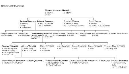 Steve Bloomer family tree