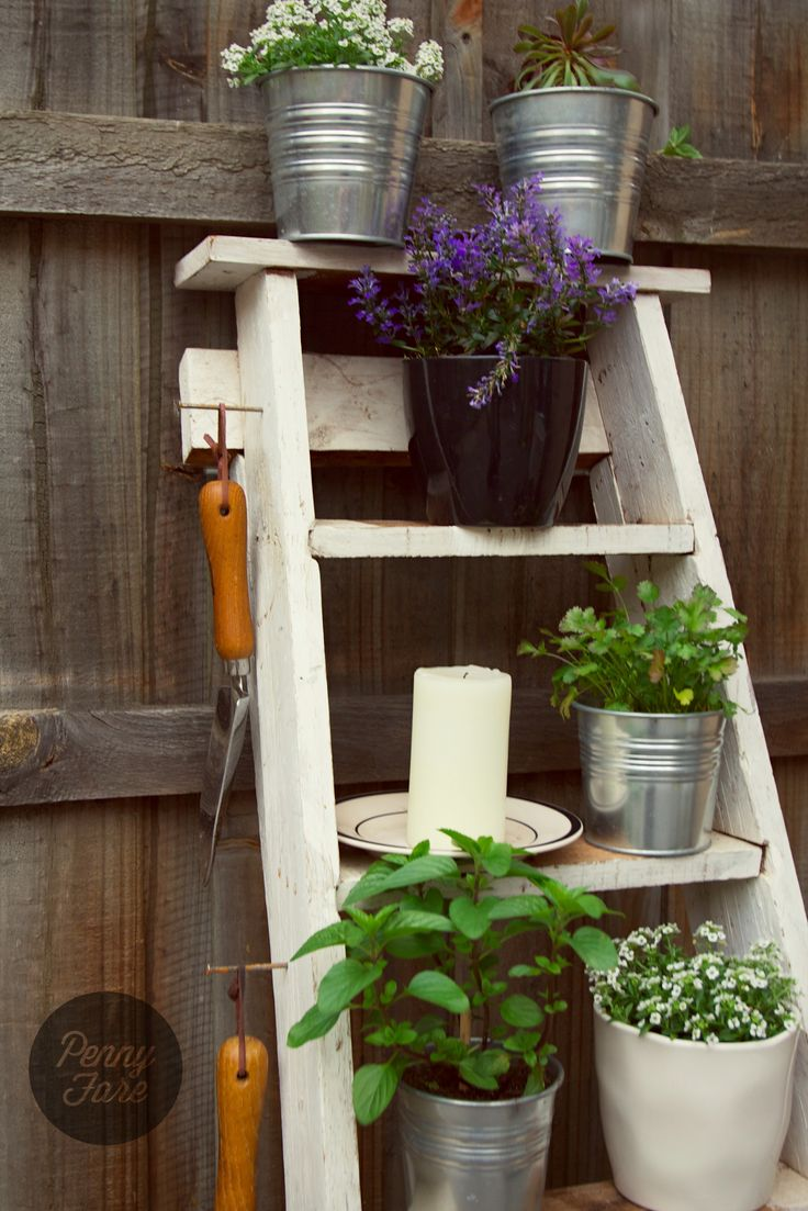 A vintage timber ladder makes a perfect vertical garden