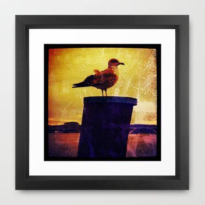 Vintage Seagull Framed Art Print