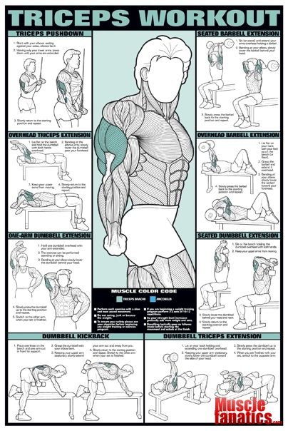 Triceps workout
