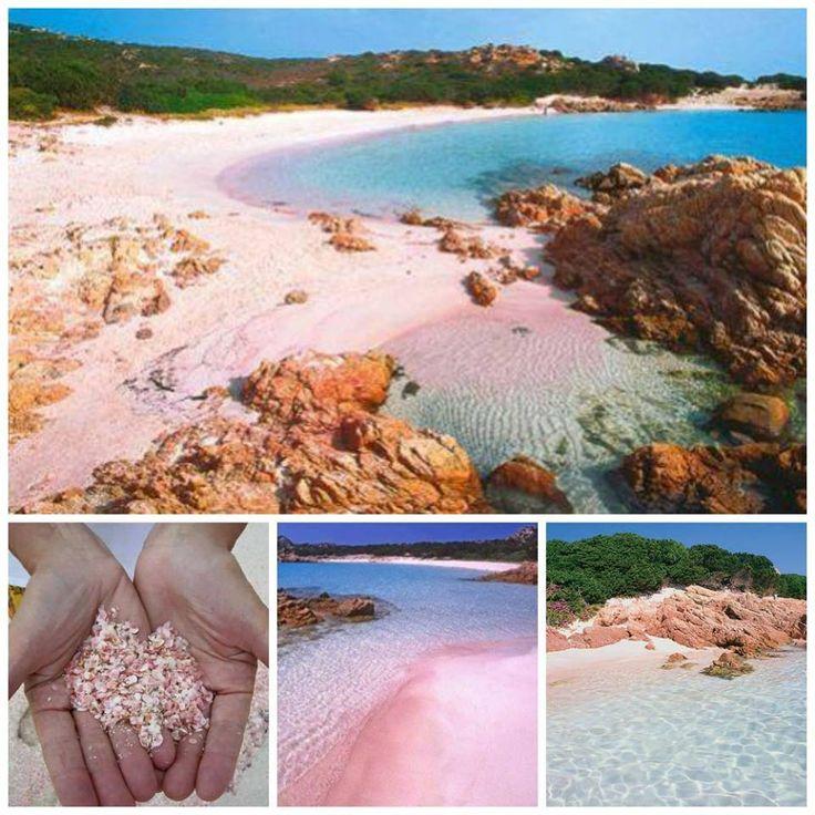 L'isola di Budelli e l'incredibile bellezza della spiaggia rosa - La Maddalena