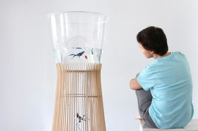 Käfig Wellensittiche Aquarium Modernes Design | Art | Pinterest | Aquarium,  UX/UI Designer And Design
