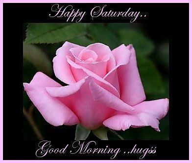 Happy Saturday, Good Morning... good morning saturday saturday quotes good morning quotes happy saturday good morning saturday quotes saturday image quotes happy saturday morning saturday morning facebook quotes happy saturday good morning