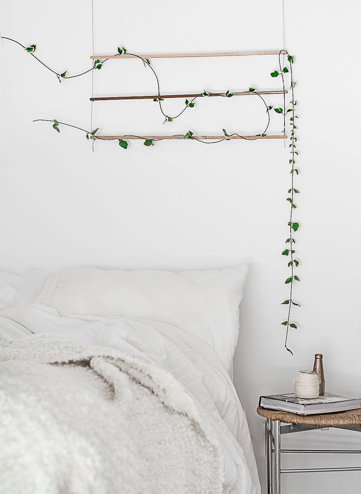 DIY: An Indoor Trellis for Climbing Vines: Gardenista