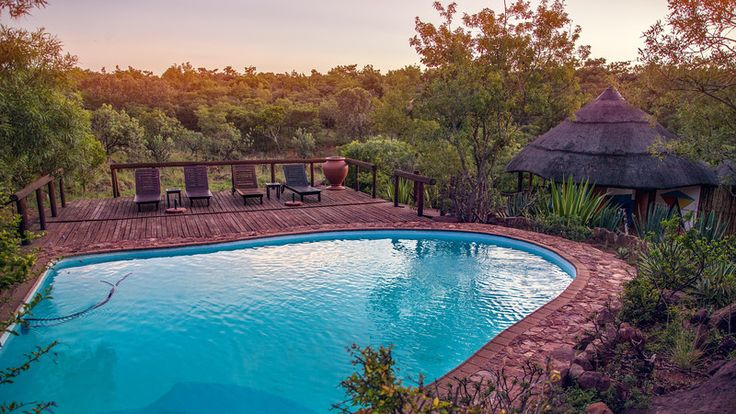Swimming pool view. The lodge's accommodation are made up of 5 African bush tents & 3 Ndebele chalets, all decorated in an African style.