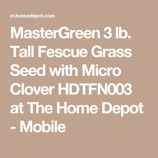 MasterGreen 3 lb. Tall Fescue Grass Seed with Micro Clover HDTFN003 at The Home Depot - Mobile