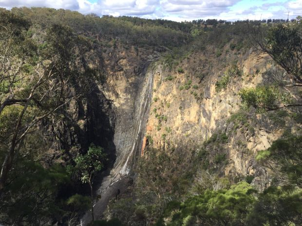 Dangars Falls – An Orchid's View