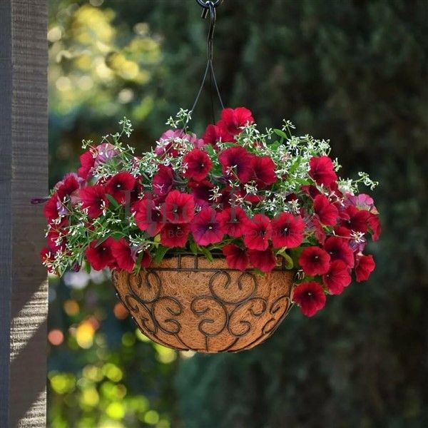 Wonderful Balcony Hanging Basket Planters In 2020 With Images
