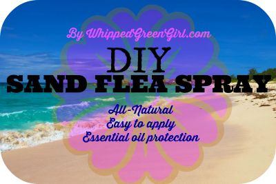 DIY Sand Flea Spray by WhippedGreenGirl.com - I'll never go down south without this spray again, all-natural, essential oil protection. Easy to apply & safe