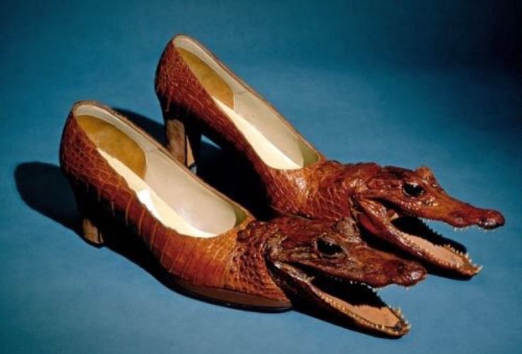 Taxidermy alligator shoes; combining animal cruelty with hideous taste...