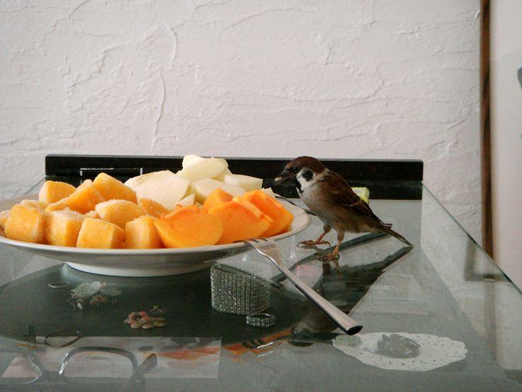 果物が好き。