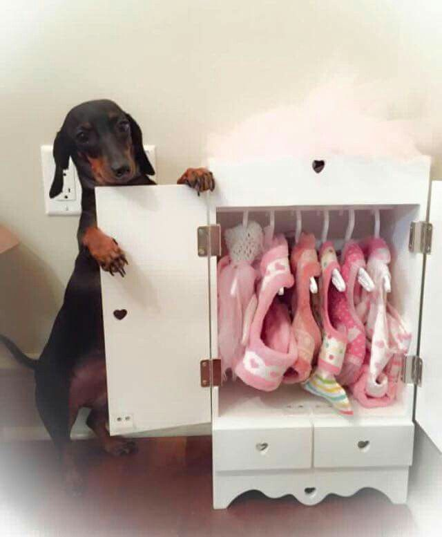 A girl needs a full closet of choices ~ all being PINK of course!!!!!!