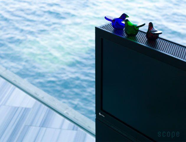 Birds by Toikka Sieppo 2 iittala | scope
