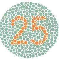 Color blindness test. Red green color blind