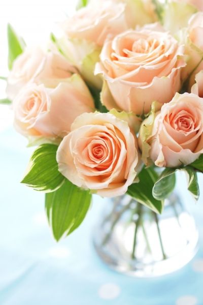 ༺✿Every Day's A Holiday ✿༻ *peach roses*