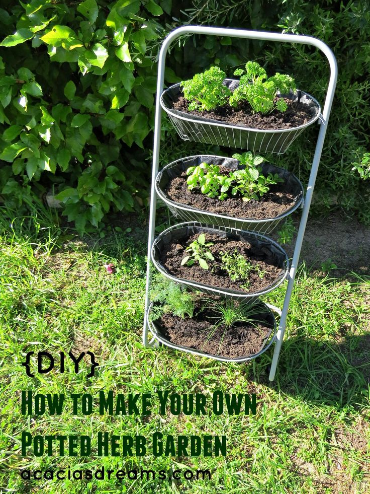 {DIY} How to Make Your Own Potted Herb Garden