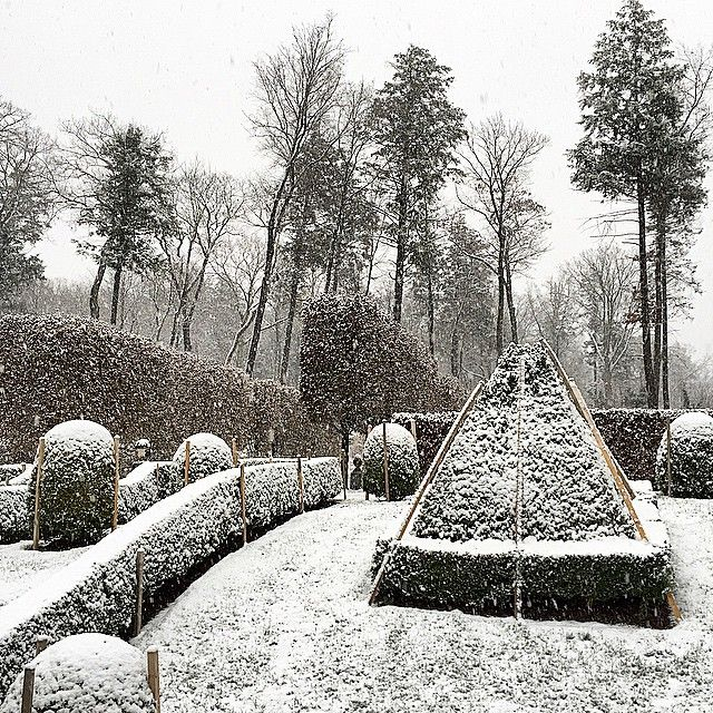 692 best images about garden in winter on pinterest for Garden design winter 2018