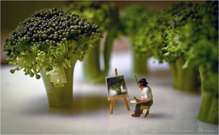 macro lens and the art of miniature photography Tiny artist