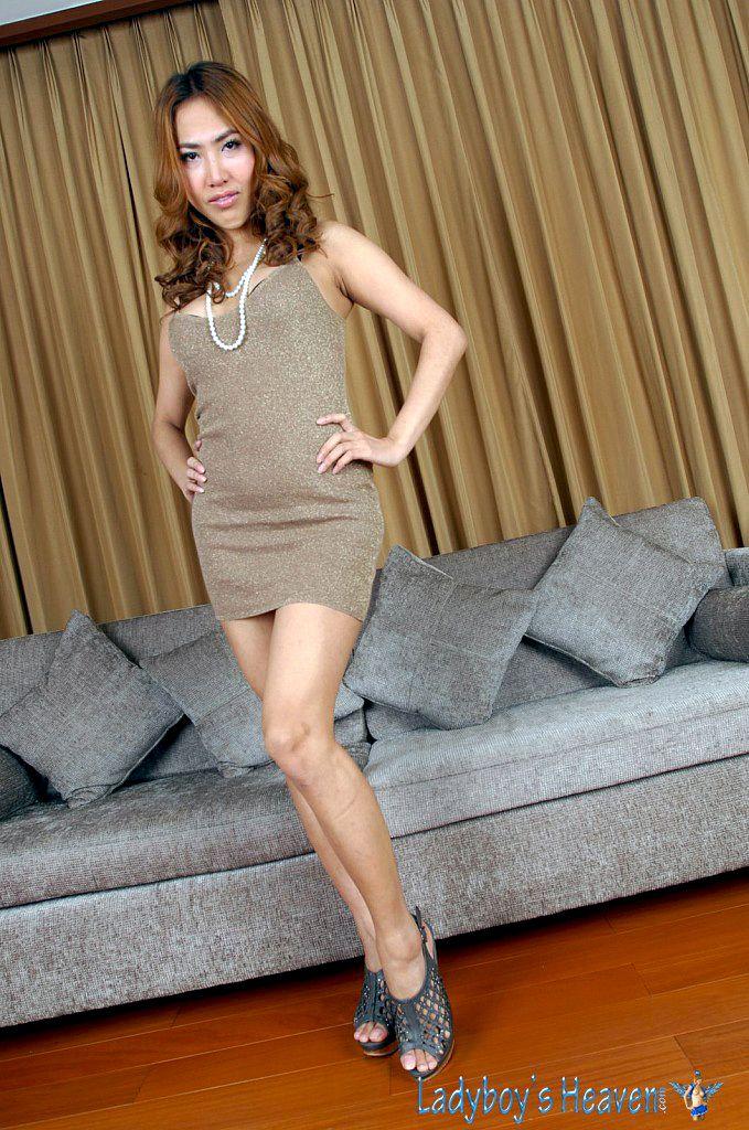 Sexy Thai Transvestite Pop Ladyboys Shemales  Sexy -9559