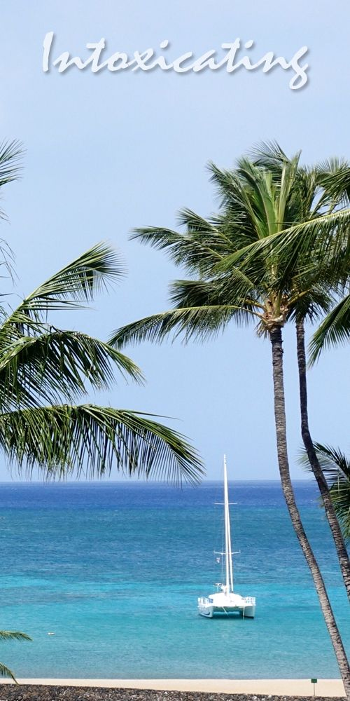 Caribbean All Inclusive Hotels | Favorite Travel Pins | Best