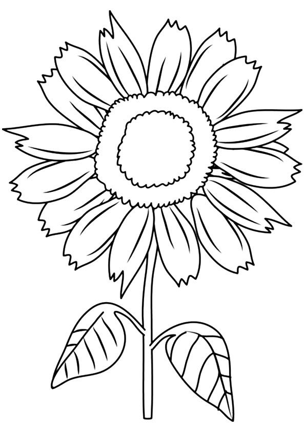 Print Coloring Image Momjunction Art Sunflower Coloring