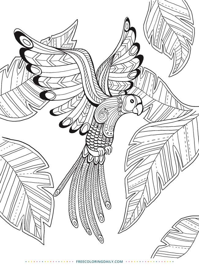 Free Coloring Tropical Bird Bird Coloring Pages Animal Coloring Pages Mandala Coloring Pages