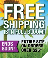 Don't miss out on the last few days of Free Shipping!