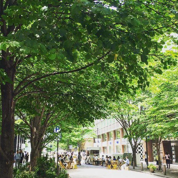 雨上がりの丸の内仲通り。木陰と木洩れ陽。 Sunlight filtering through trees after rain. #marunouchi #marupix #丸の内仲通り #丸の内 #tokyo #walking #promnade