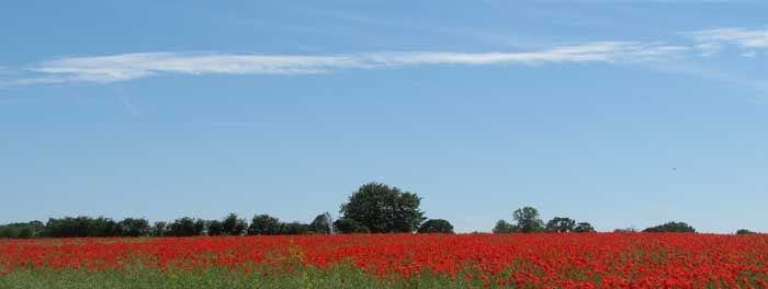 Celebrate Fathers Day in Suffolk this Sunday! http://www.suffolktouristguide.com/Fathers-Day-in-Suffolk-Things-To-Do.asp