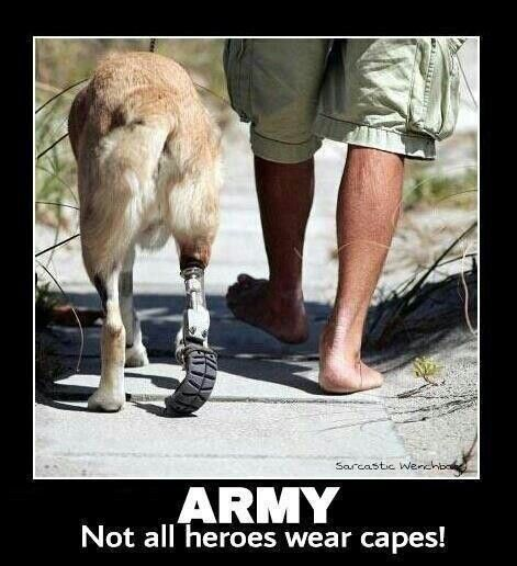 ♥ Our military service working dogs troops ~ War Heros We support our troops! LystHouse is the simple way to buy or sell your home. Visit  http://www.LystHouse.com to maximize your ROI on your home sale.