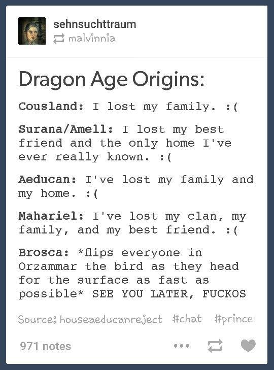 Dragon Age: Origins. The Beginnings