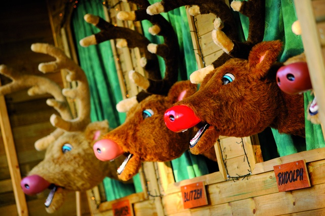 Singing Reindeer by Center Parcs UK, via Flickr