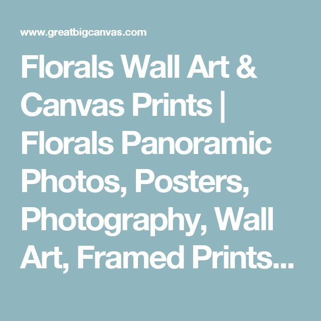 Florals Wall Art & Canvas Prints | Florals Panoramic Photos, Posters, Photography, Wall Art, Framed Prints & More | Great Big Canvas