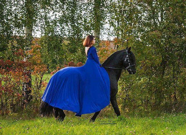 Instagram media by poetsphoto - Конь предоставлен - @fairytale.horse  #poetsphoto #friesian #frieser #frison #friesianhorse #friesiansofinstagram #friese  #horselove #lovehorse #horse #black #blackbeauty #blackhorse  #bestofequines #drafthorse #horsesofinstagram #instahorse #stallion #equine #summer #photorussia #nikon #fairytale  #fairytalehorse #жеребец #конь #вороной #черный #фриз #бумер