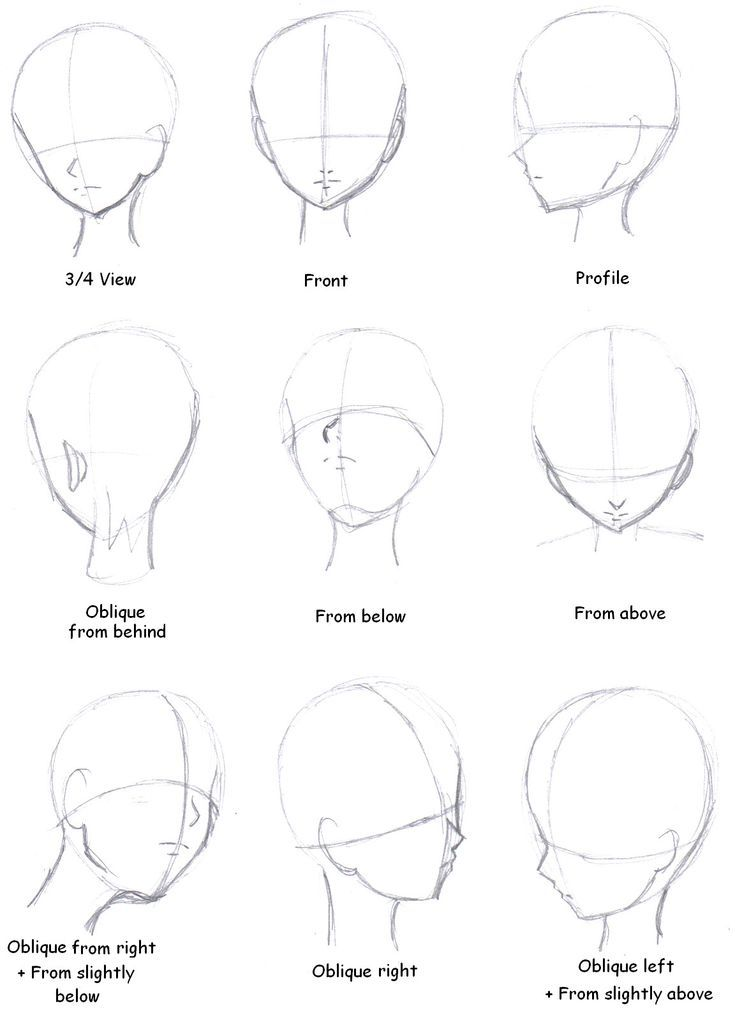 How To Draw Manga Faces From Different Angles In 2020 Anime Drawings Tutorials Drawing Heads Manga Tutorial