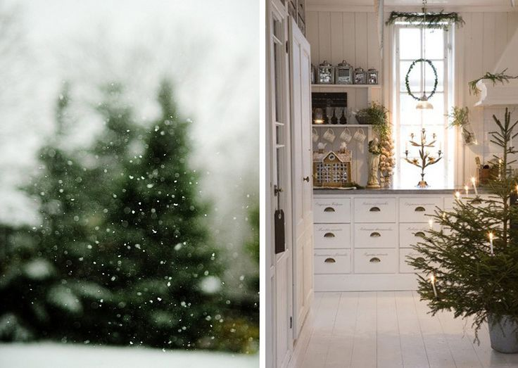 i just love the evergreen trees blurred through the snow.: Kids Stay