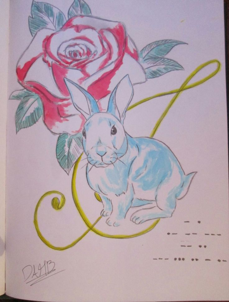#draw #drawing #watercolor #rabbit #note #rose #sketch