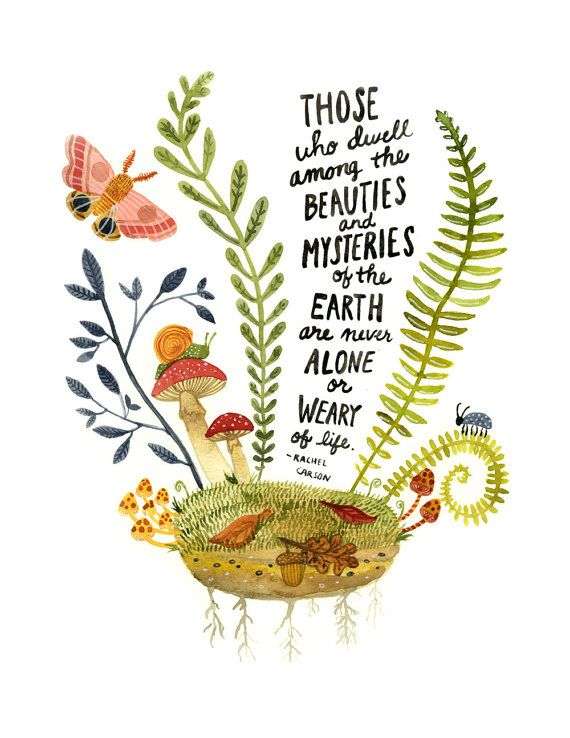 Watercolor Art Print, Inspirational Quote, Botanical Illustration, Science Wall Art, Environmentalism, Rachel Carson Quote