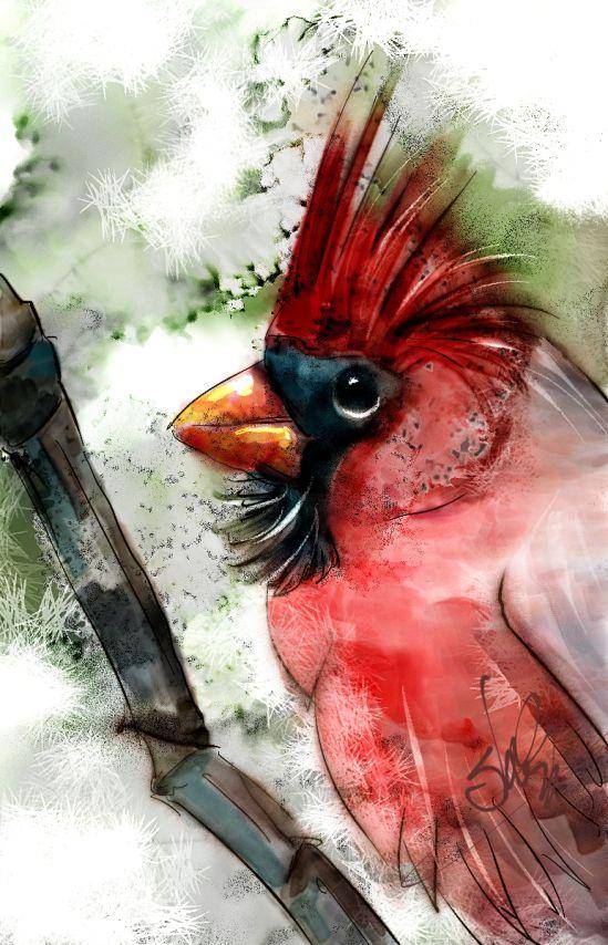 Cardinal - watercolor video tutorial