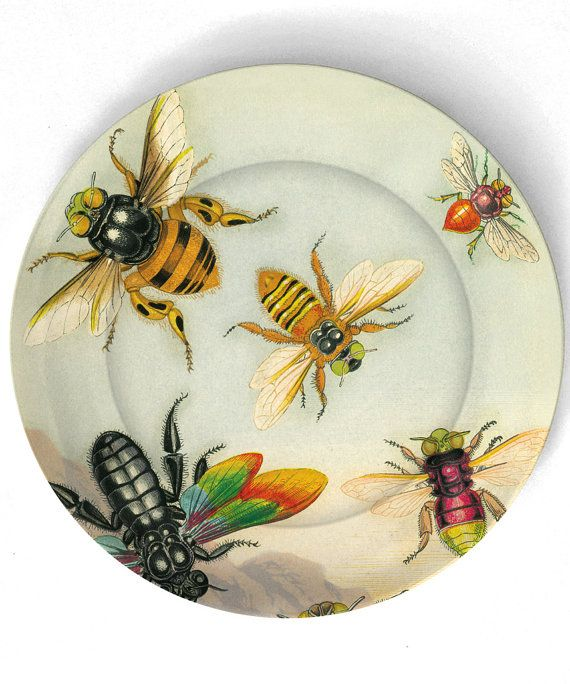 ≗ The Bee's Reverie ≗ Bee Plate | TheMadPlatters