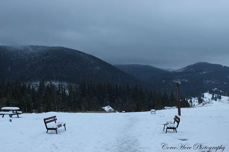 Frozen. Two lonely benches in the winter #borsec #romania #winter #nature