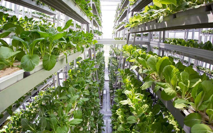 Sky Greens is the world's first hydraulic-driven vertical farm | Inhabitat - Sustainable Design Innovation, Eco Architecture, Green Building
