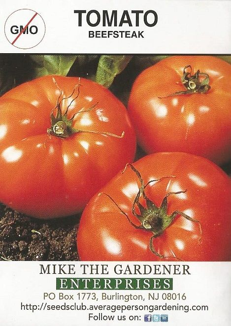 How to Grow Beefsteak Tomatoes from Seed