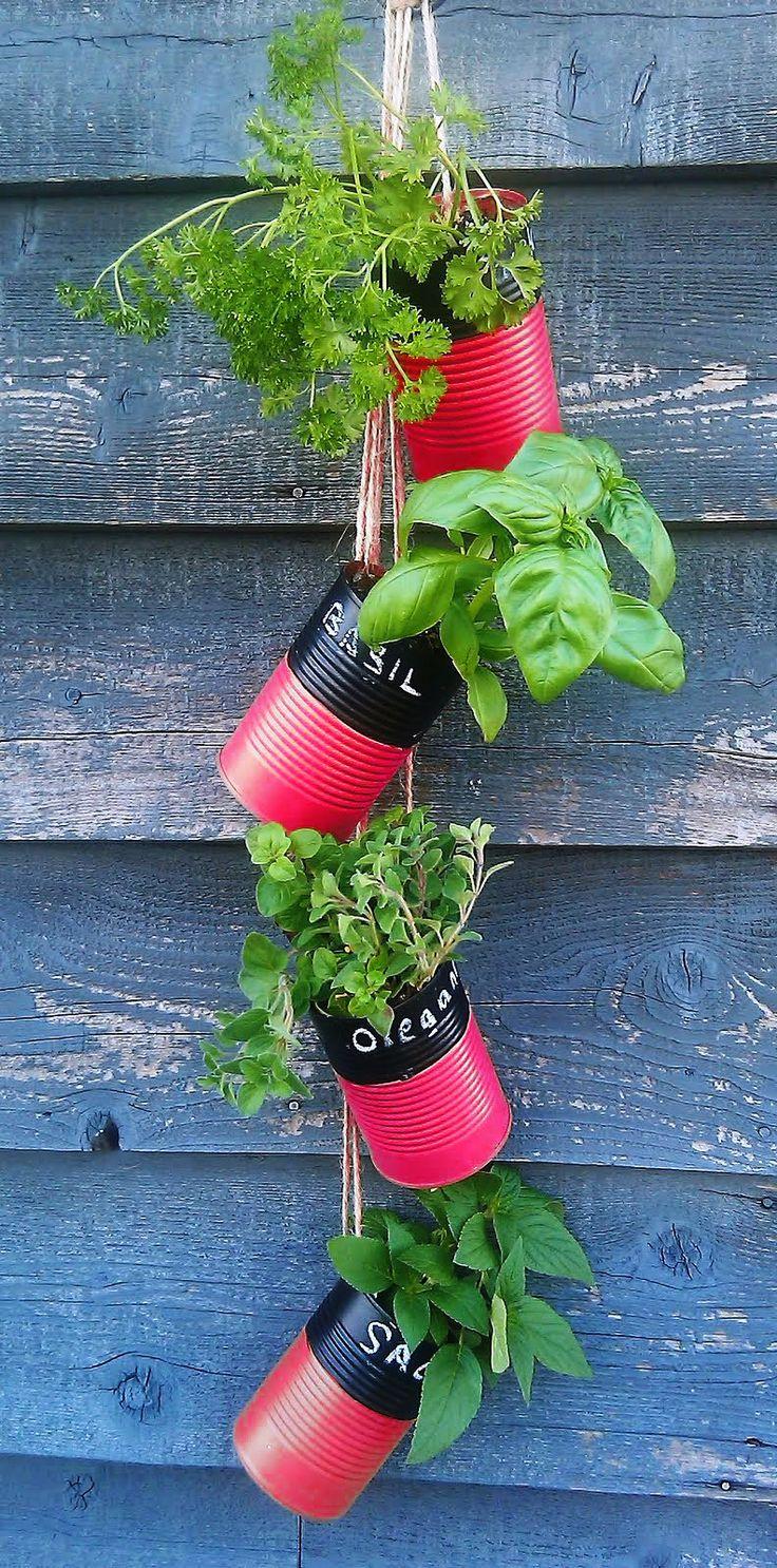 DIY tin can herb holder