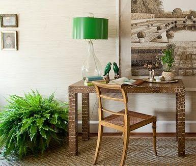 Las 25 mejores ideas sobre plantas de poca luz en - Luces para plantas de interior ...