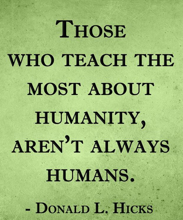 "We could all stand to learn a thing or two from our furry companion. | ""Those who teach the most about humanity, aren't always humans.""—Donald L. Hicks"